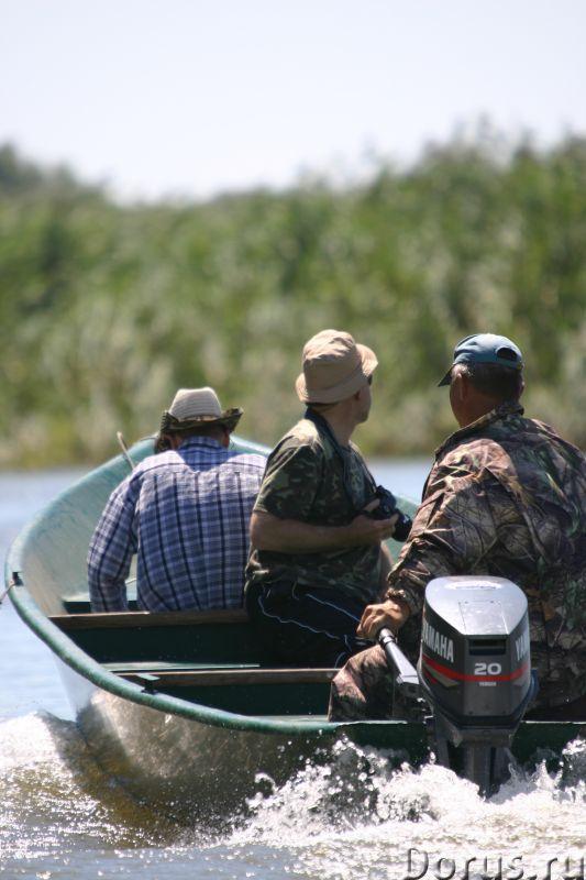 """Рыбалка в Астраханской Дельте. Гандурино. """"У Саши"""" - Прочее по отдыху и спорту - Дом со всеми удобст..., фото 7"""